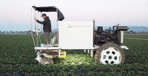 Sistema automatizado de colheita de morangos da Advanced Farm