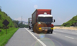 Thumb_trucks-on-the-road_julio_silveira