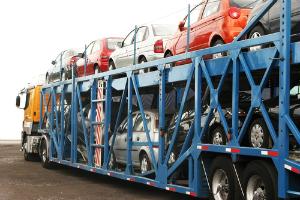 Thumb_cegonha__transporte__carro_300x200