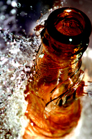 Thumb_bottles-of-beer-29-1329011-1599x2397