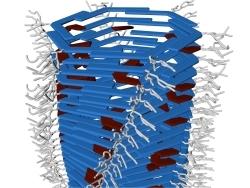 Thumb_as_m_quinas_moleculares_poder_o_ser_postas_para_trabalhar_conjuntamente_para_extra__o_de_trabalho__til_em_escala_macro